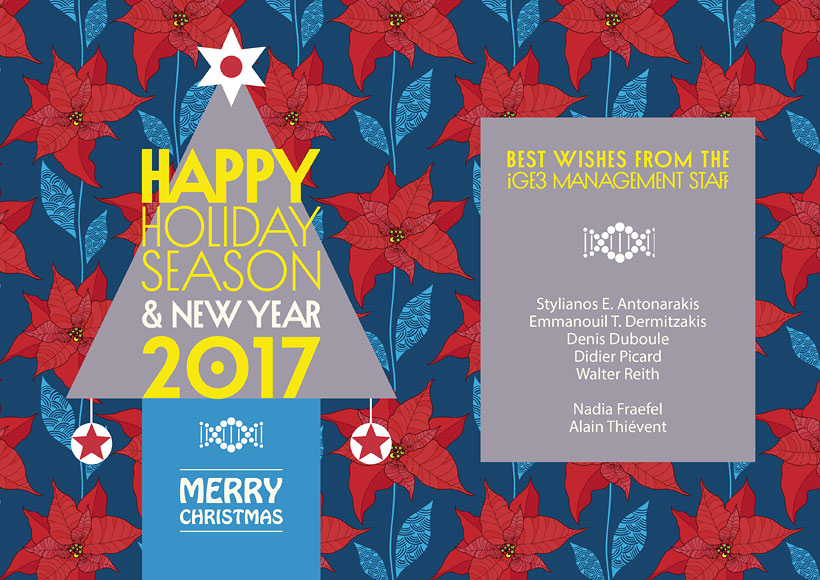 Best wishes 2017 card